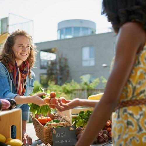 farmers-market-sunshine-cosat-1