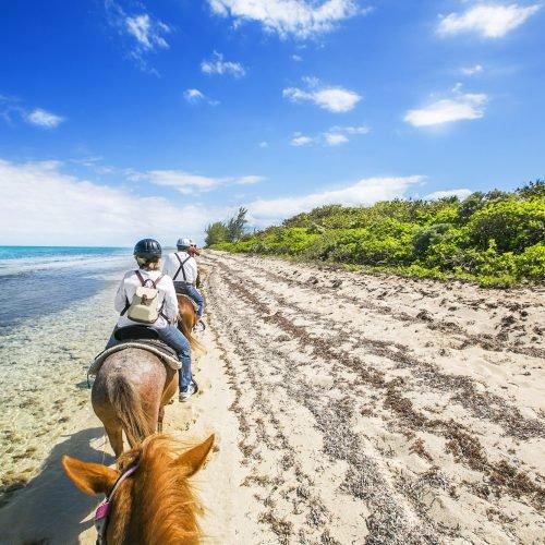 noosa-horse-riding-1